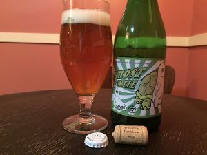Fantome and Beancurdturtle collaboration, Ghost Turtle saison poured into a tulip beer glass.